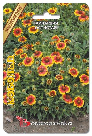 Гайлардия крупноцветковая смесь выращивание из семян 80